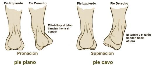 pronacion y supinación - Fernanda Millions Dutra- Ejercicios Pilates para pies - Pilates Sant Celoni